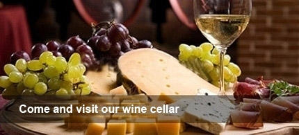 Come and visit our wine cellar